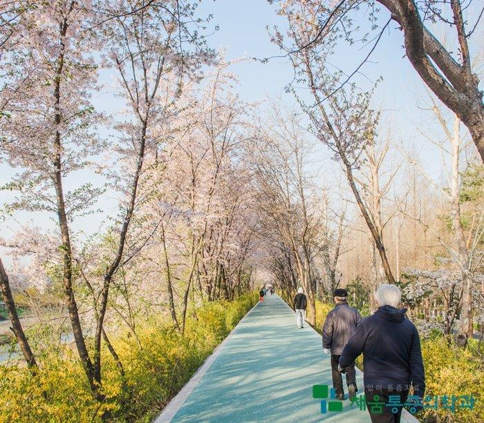 봄철 걷기